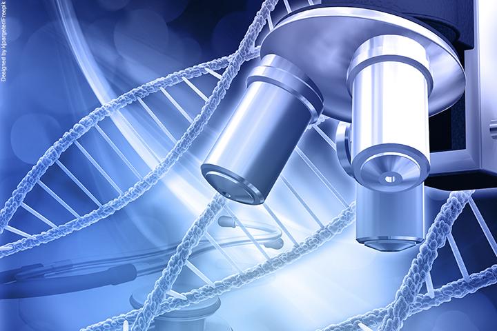 pesquisa enzima corona portal
